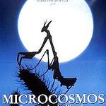 IF63-MICROCOSMOS