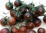 Black Cherry Tomato