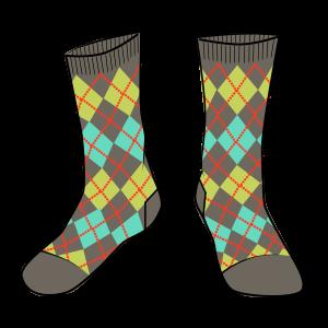 Bionic Socks