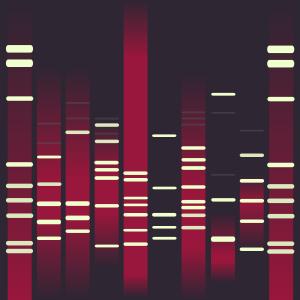 Curiosity DNA