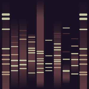 Arkden's DNA