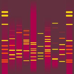 Leia's DNA