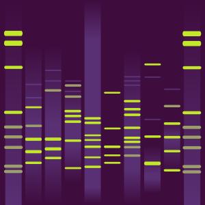 Kandi's DNA