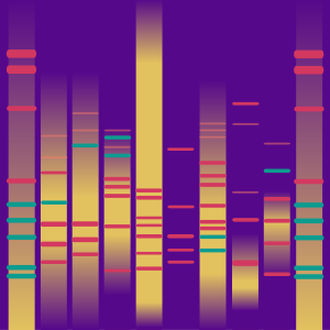 Innate Artist DNA'