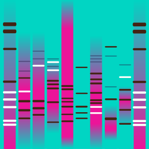 Play That Funky DNA