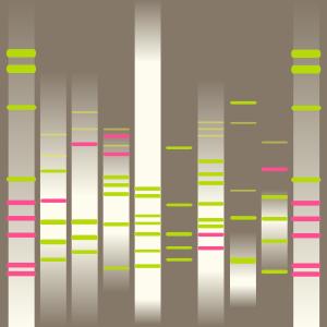 Monday DNA