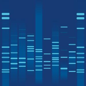 Blue strom DNA