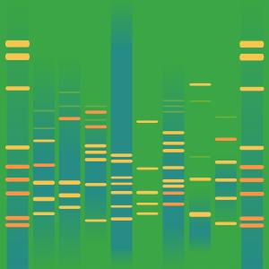 Retro Genes