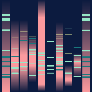 Other state of DNA