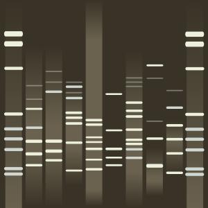 A VERY MARSIFUL DNA.