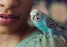 LovelyLena
