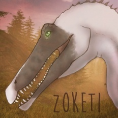 Zoketi