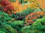 Autumn Monet Garden2