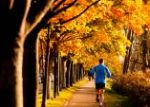 autumn run