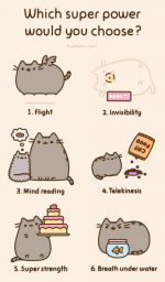 Pusheen