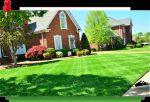 lawn service provide