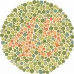 Color Blind Test 45