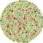 Color Blind Test 56