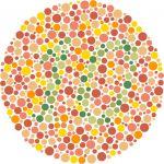 Color Blind Test 10