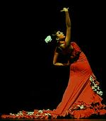 Flamenco Tree