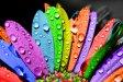 nagy, színes ceruzák