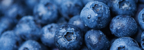 antioxidants rich blueberries