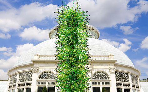 chihuly glass sculpture at new york botanical gardens