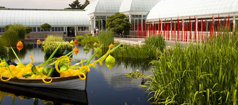 chihuly hardy pool installation at new york botanical gardens