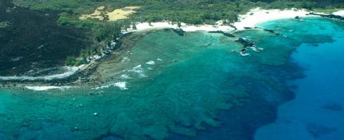 Coastal Reef, Hawaii