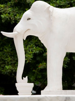 white elephant statue
