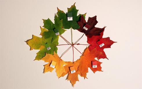 pantone_fall_colors_full.jpg