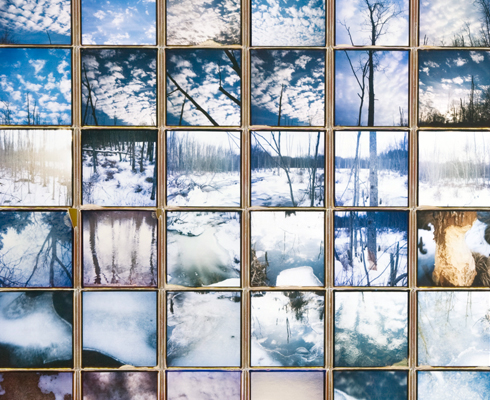 Patrick Winfield's Beaver Pond Polaroid Composite