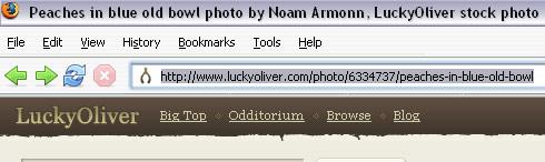 copy_url.jpg
