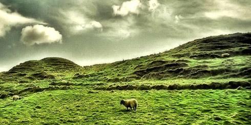 green_ireland.jpg