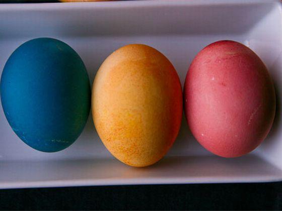 22100401-eggs2