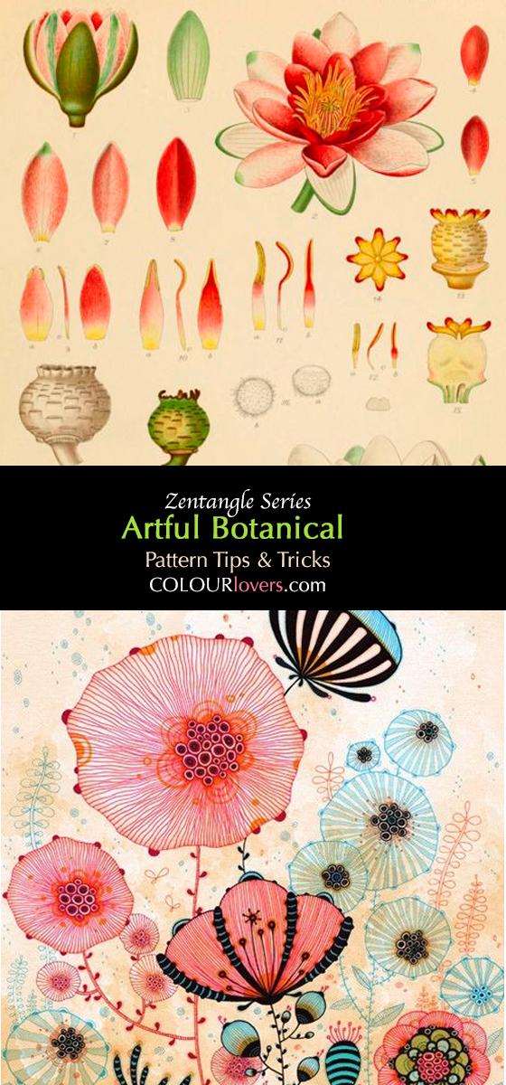body_botanicalillustration