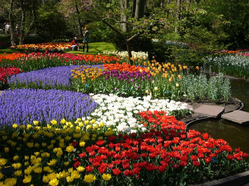 Keukenhof-Gardens-Netherland