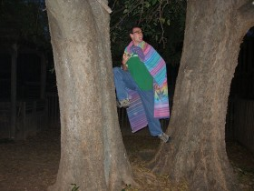 6-Super Tree-ro