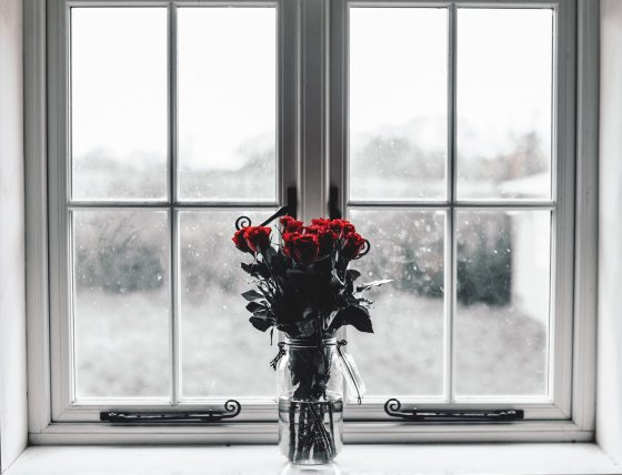 red roses next to closed window