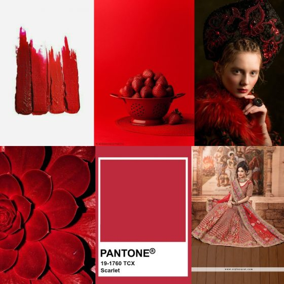 scarlet color palette