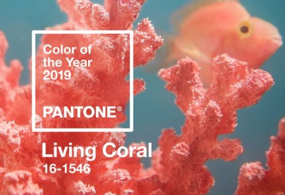 pantone color of 2019 living coral