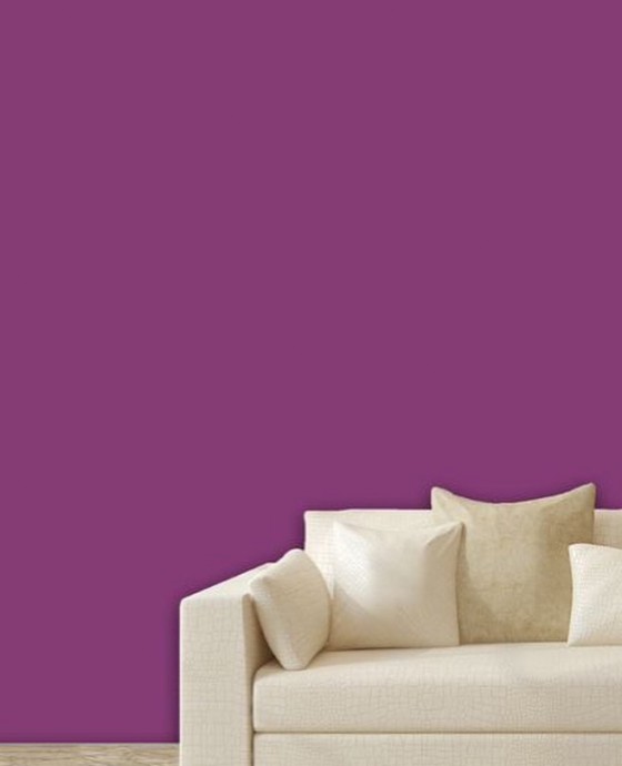 purple wall and white sofa