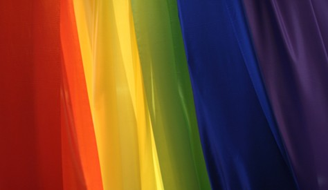 Colors of the Cause: LGBT Movement