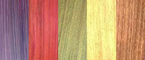 Color In Nature: Wood