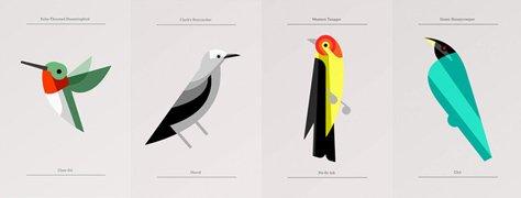 Flora Fauna: Bird Editions By Josh Brill