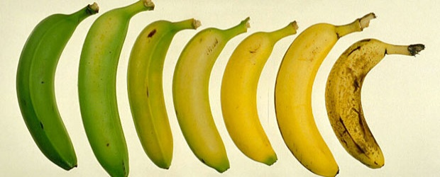 Banana Colors & The Int'l Banana Club's Lost Appeal