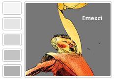 Emexci