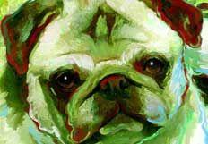 dog_lady