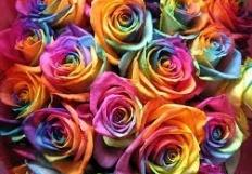 lovemycolors15