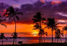island imagery